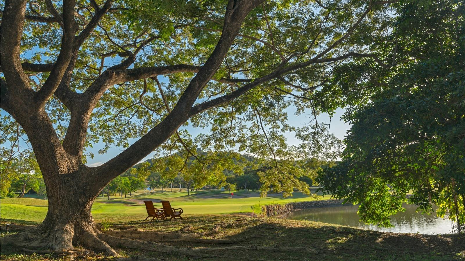 Westin Golf Resort-Costa-Rica-Playa-Chonchal-golf
